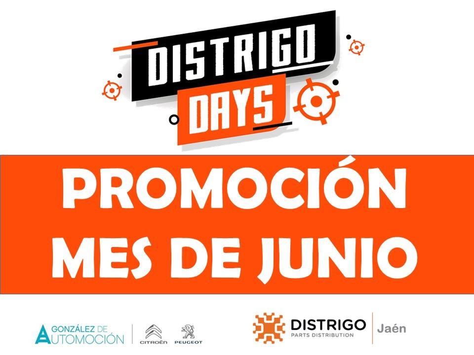 Distrigo Jaén – Ofertas de Junio para talleres