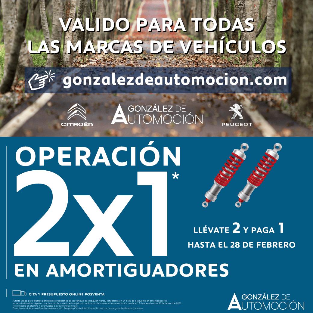2×1 AMORTIGUADORES ENERO – FEBRERO