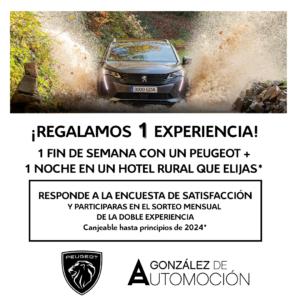 Experiencia-Peugeot-RRSS-Gonzalez de Automocion